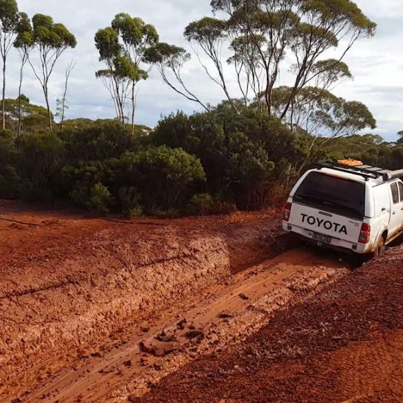 The Best 4x4 Tracks in Brisbane